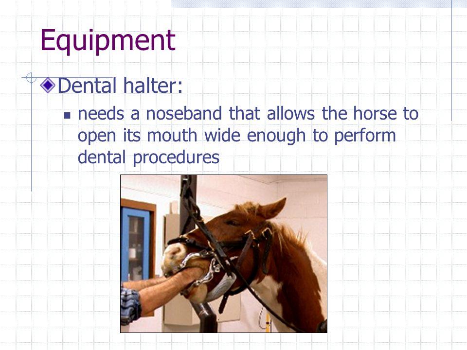 Equipment Dental halter: