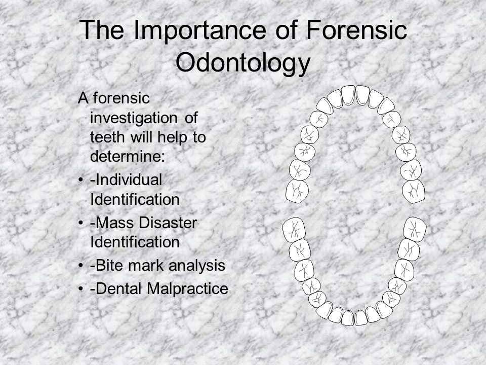 The Importance of Forensic Odontology