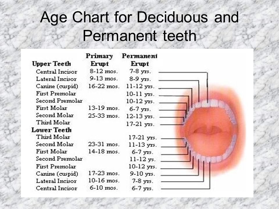 Age Chart for Deciduous and Permanent teeth