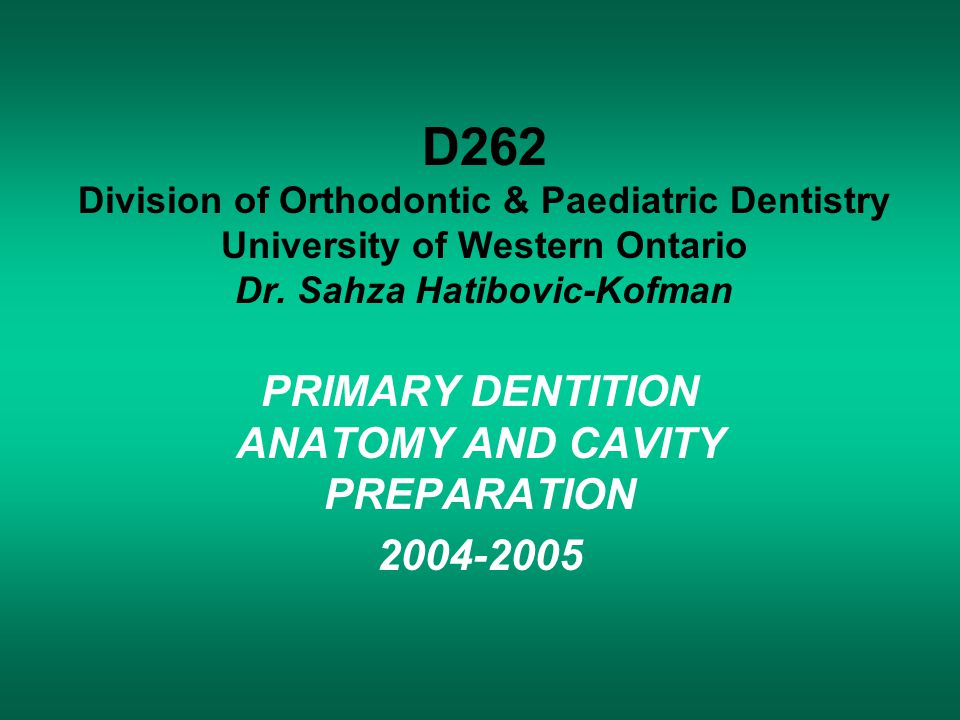 PRIMARY DENTITION ANATOMY AND CAVITY PREPARATION 2004-2005