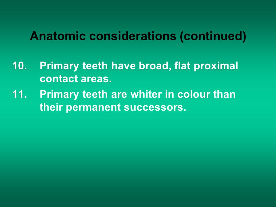 Anatomic considerations (continued)