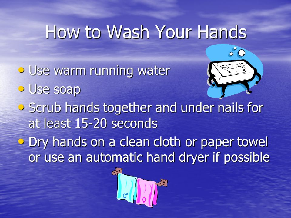 How to Wash Your Hands Use warm running water Use soap