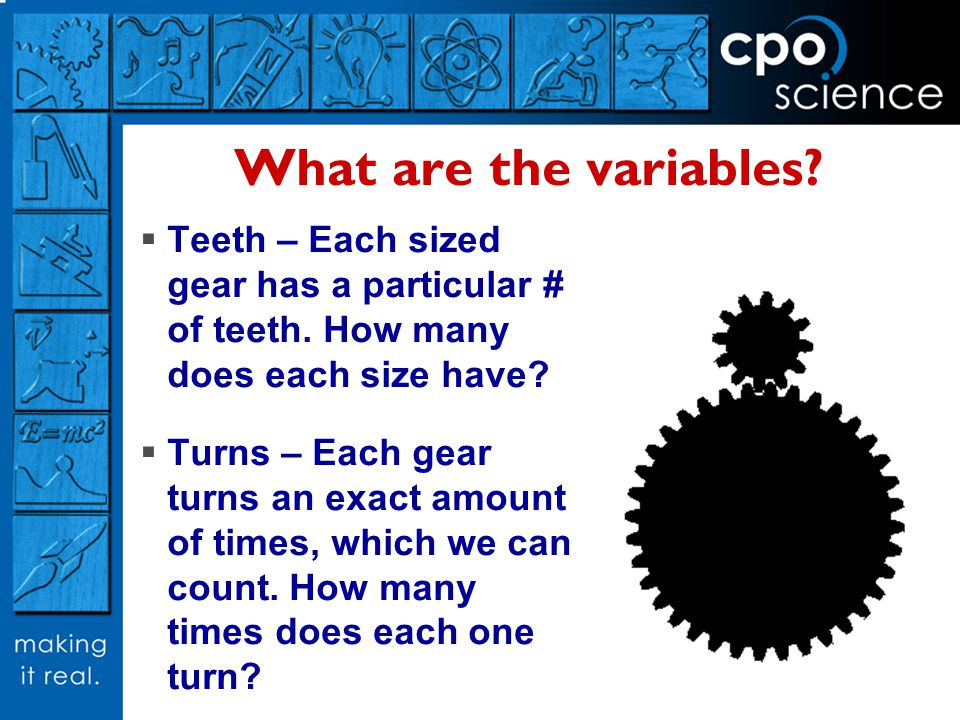 What are the variables Teeth – Each sized gear has a particular # of teeth. How many does each size have
