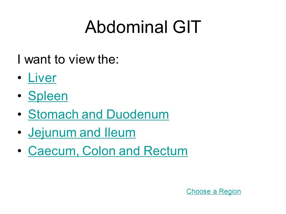 Abdominal GIT I want to view the: Liver Spleen Stomach and Duodenum