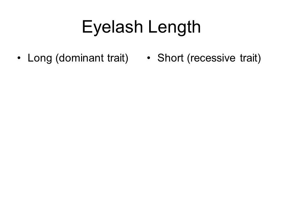 Eyelash Length Long (dominant trait) Short (recessive trait)