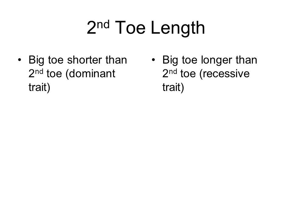 2nd Toe Length Big toe shorter than 2nd toe (dominant trait)