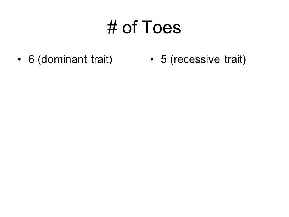 # of Toes 6 (dominant trait) 5 (recessive trait)