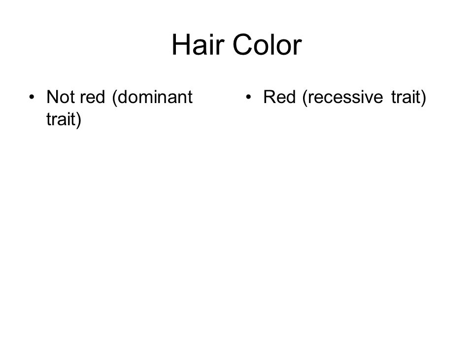 Hair Color Not red (dominant trait) Red (recessive trait)