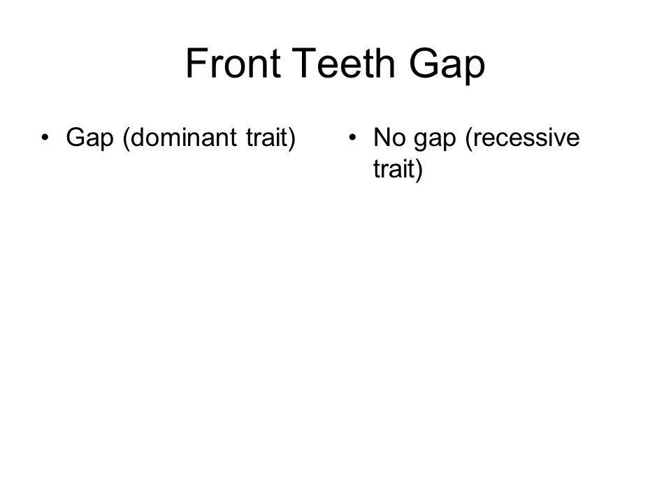 Front Teeth Gap Gap (dominant trait) No gap (recessive trait)