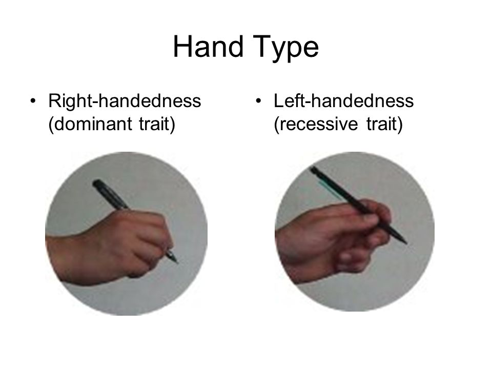 Hand Type Right-handedness (dominant trait)