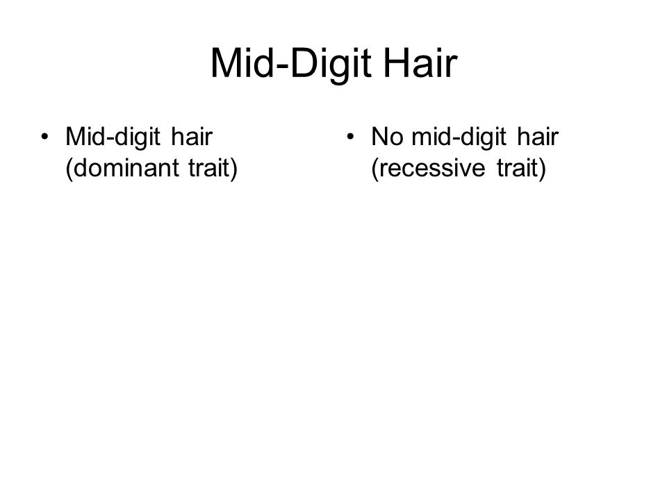 Mid-Digit Hair Mid-digit hair (dominant trait)