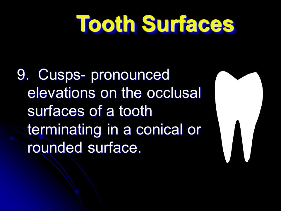 Tooth Surfaces 9.