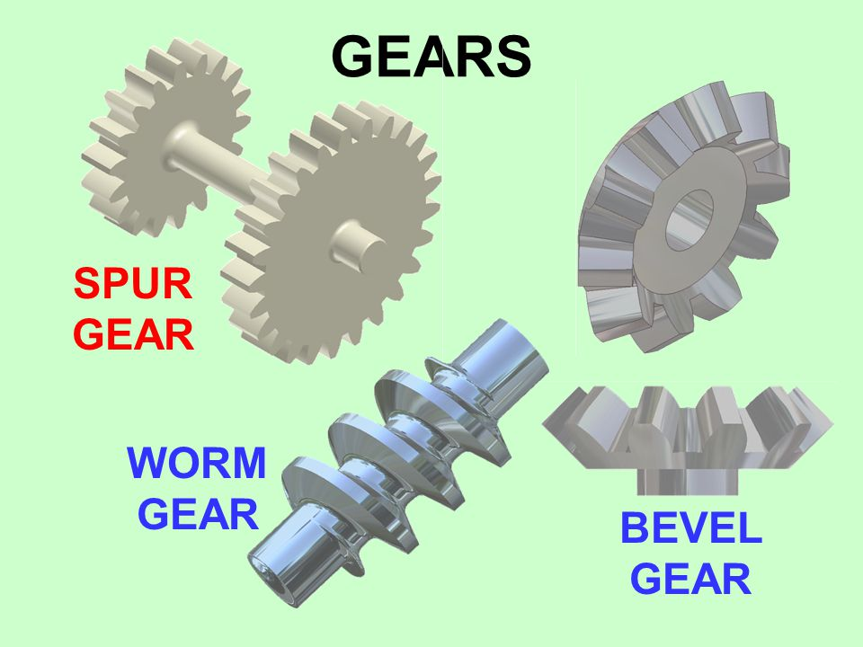 GEARS SPUR GEAR WORM GEAR BEVEL GEAR