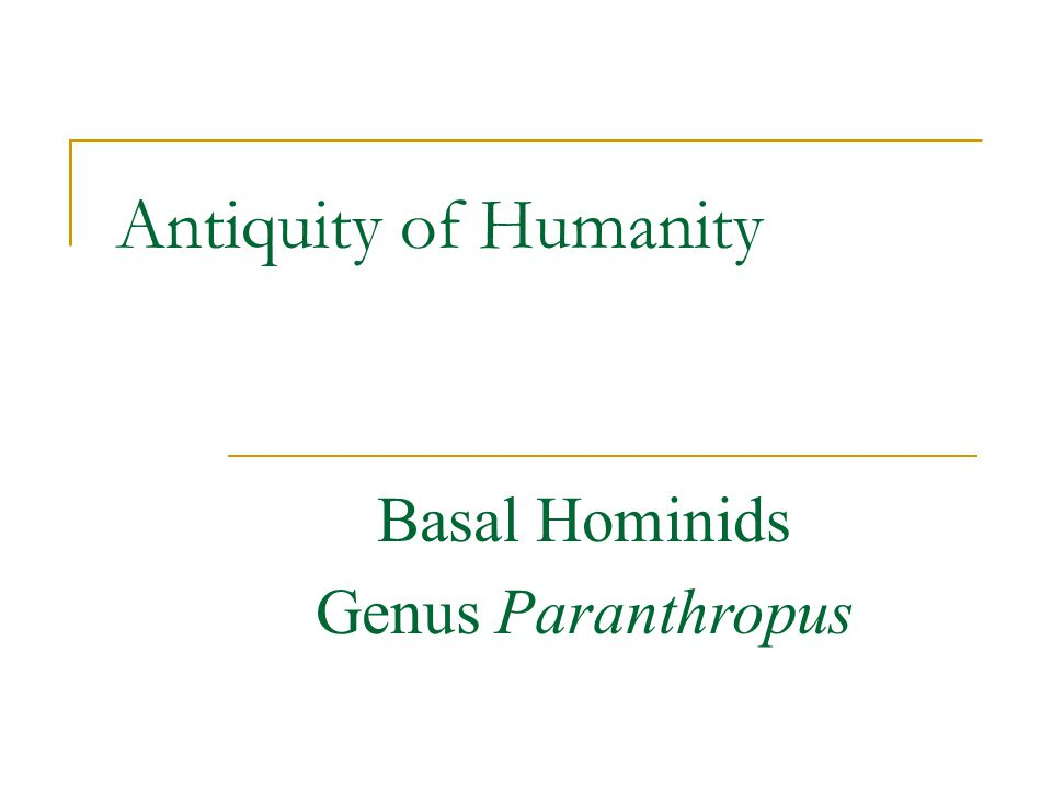 Antiquity of Humanity Basal Hominids Genus Paranthropus
