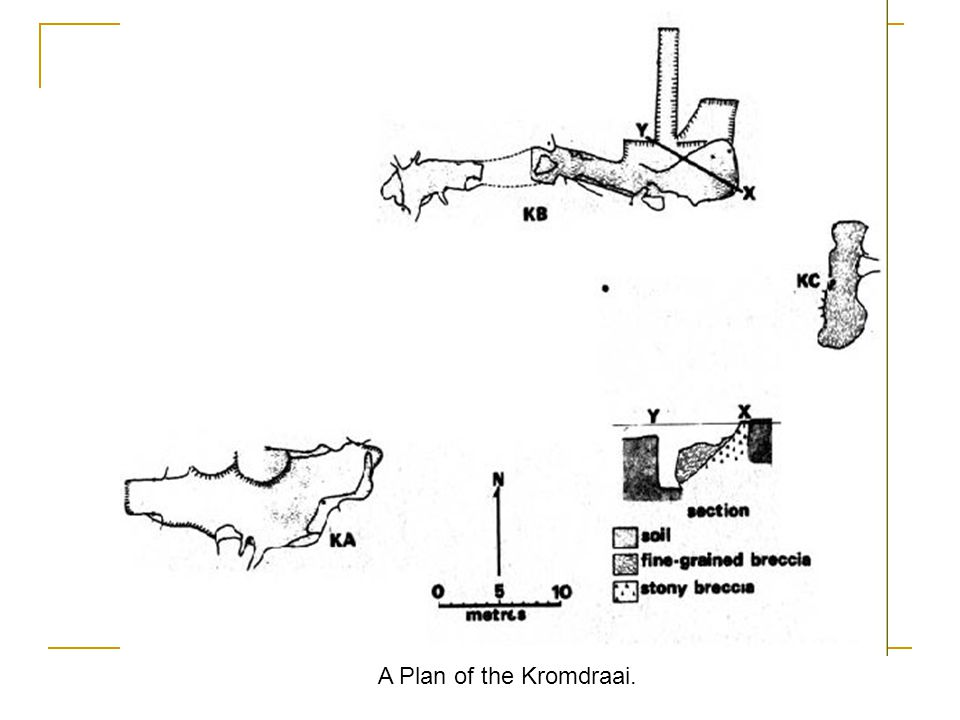 A Plan of the Kromdraai.