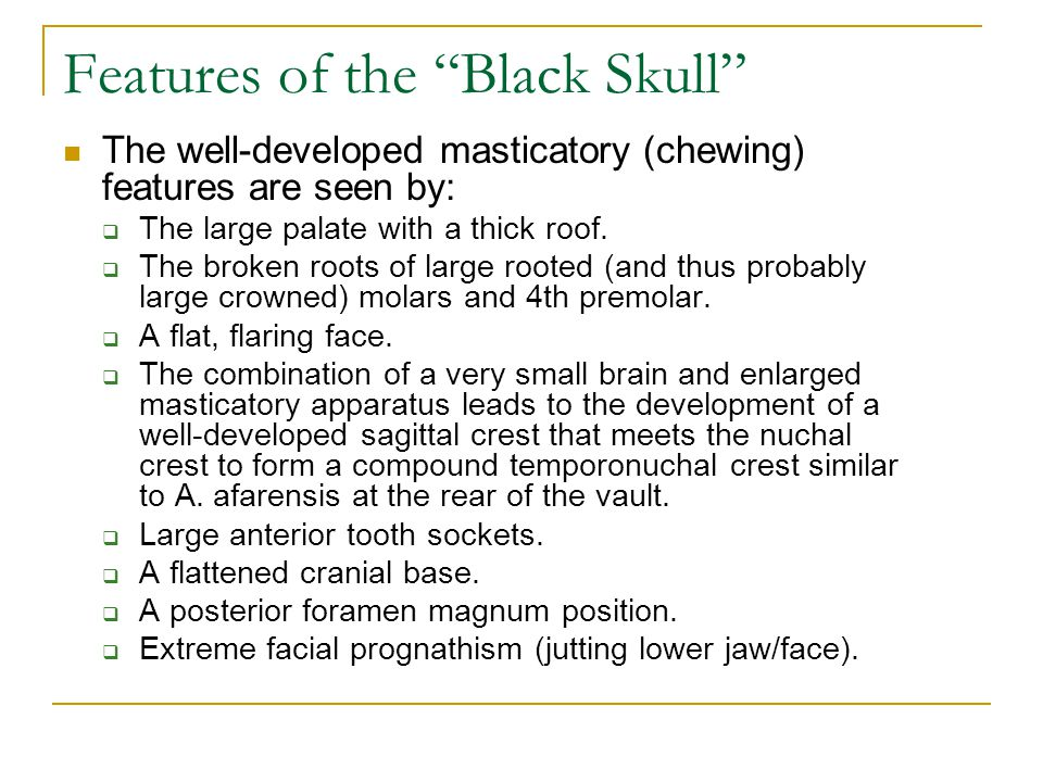 Features of the Black Skull