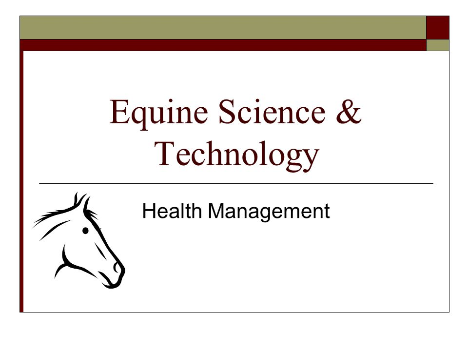Equine Science & Technology