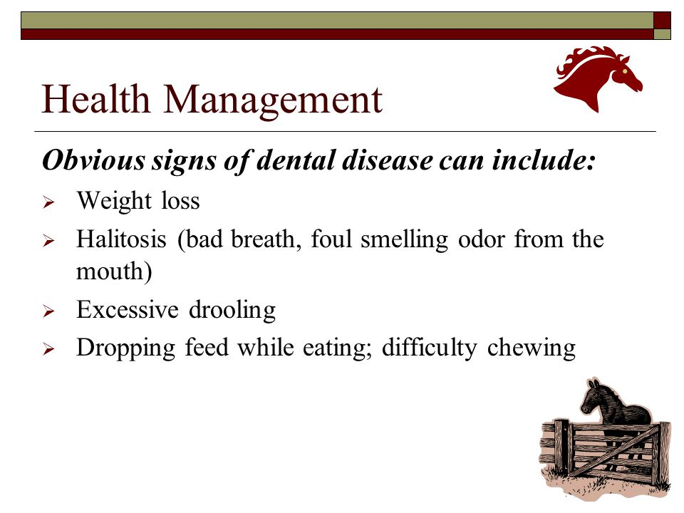 Health Management Obvious signs of dental disease can include: