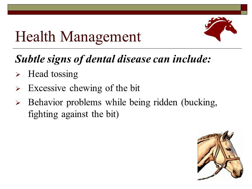 Health Management Subtle signs of dental disease can include: