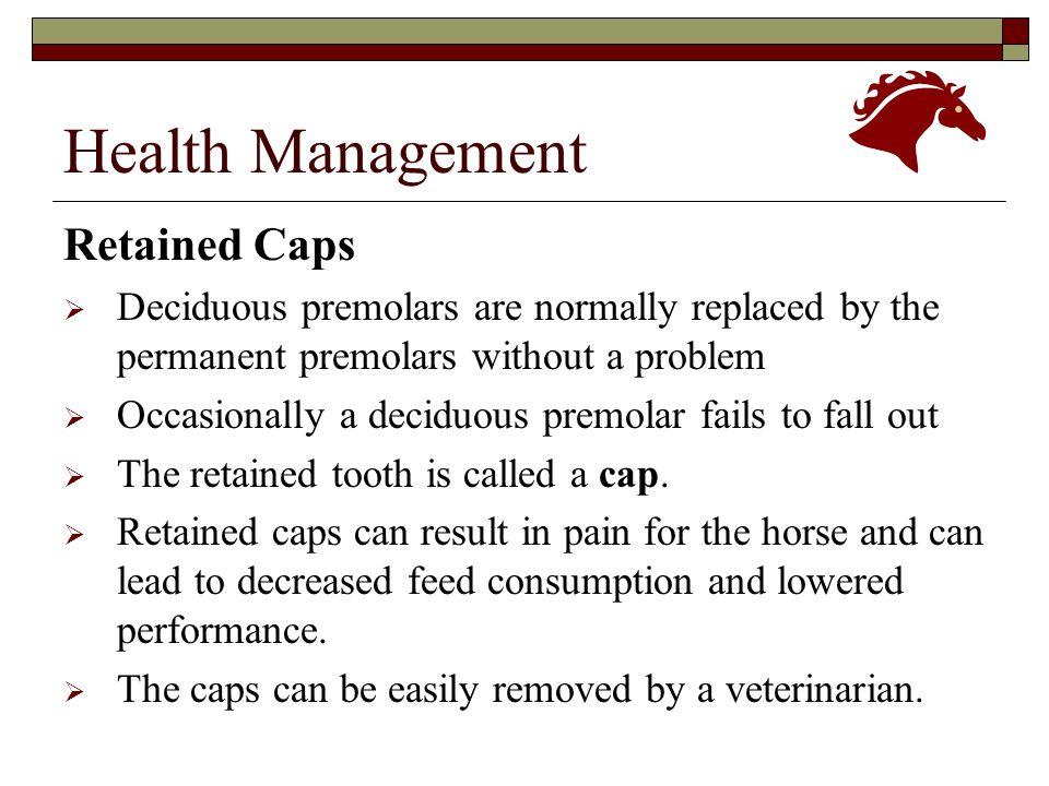 Health Management Retained Caps
