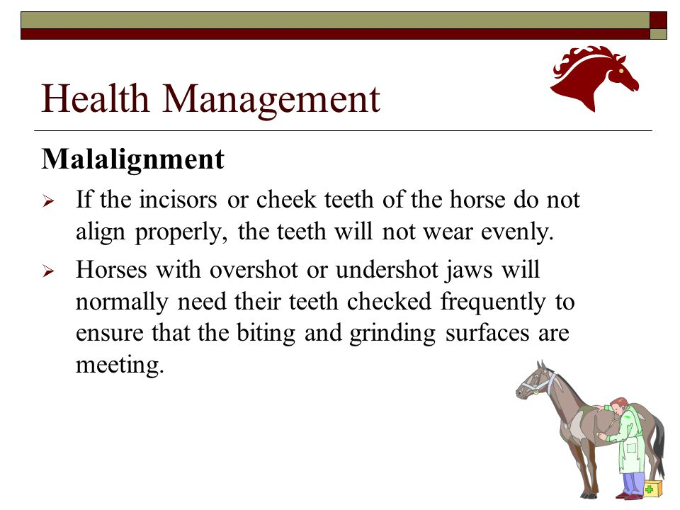 Health Management Malalignment