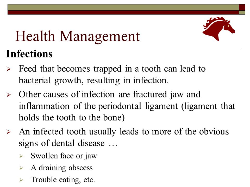 Health Management Infections