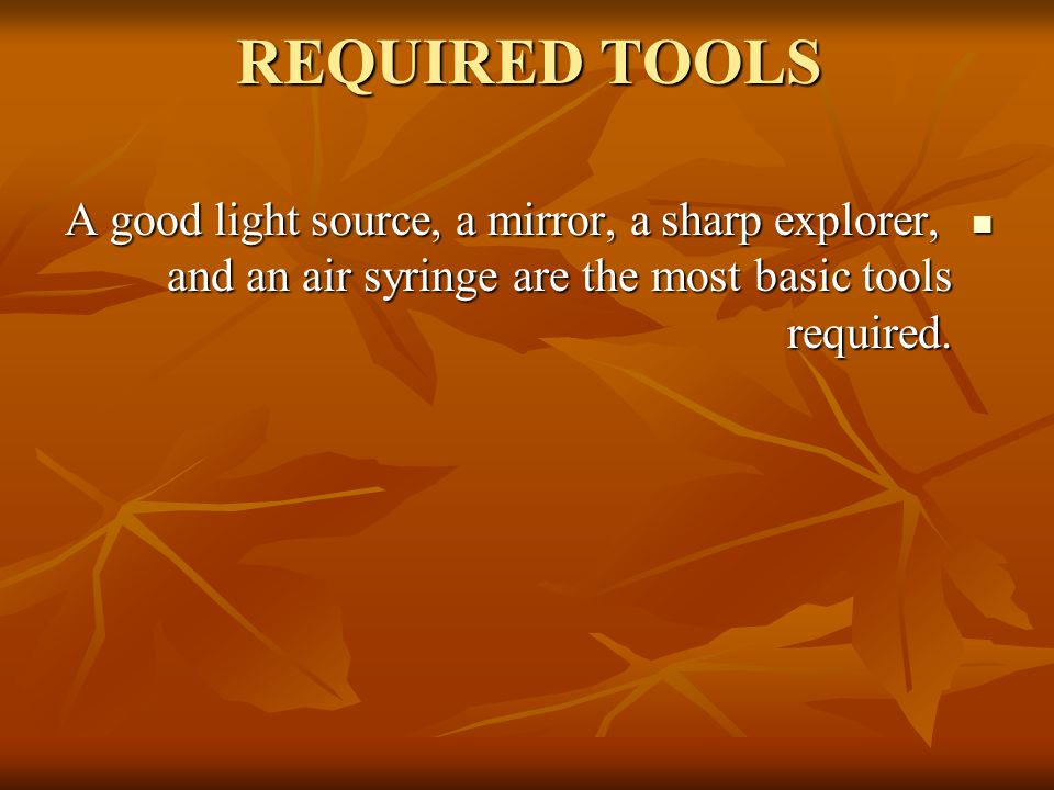 REQUIRED TOOLS A good light source, a mirror, a sharp explorer, and an air syringe are the most basic tools required.