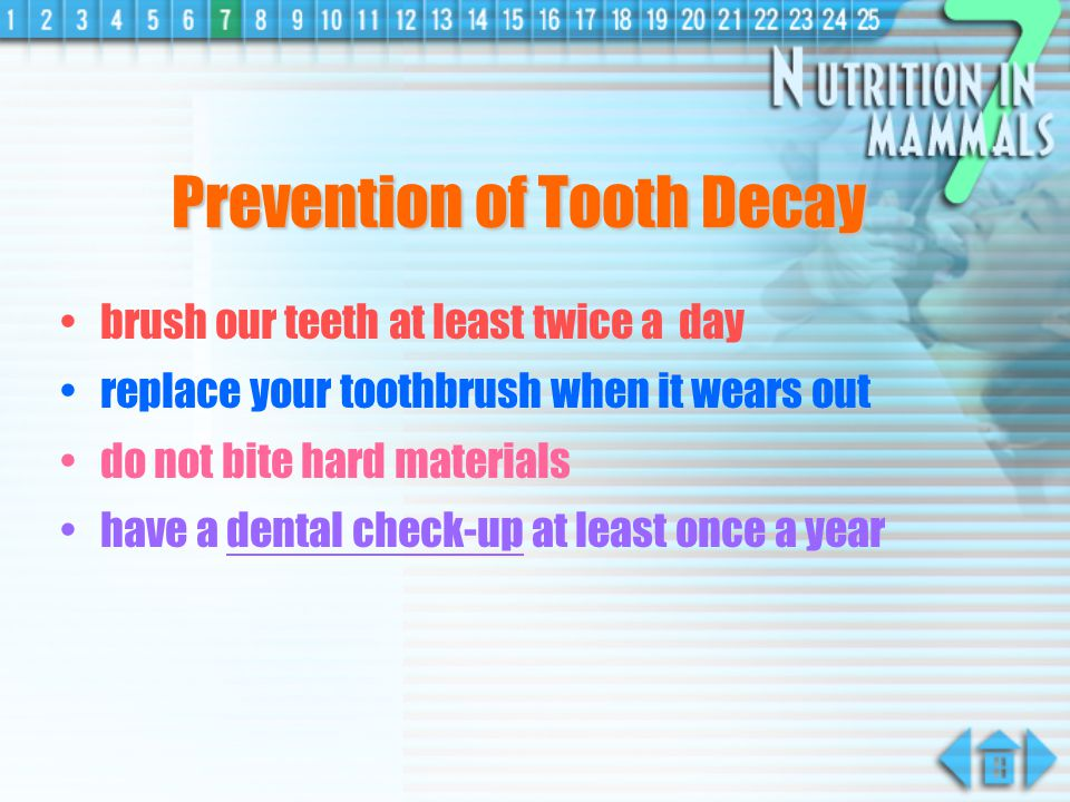 Prevention of Tooth Decay