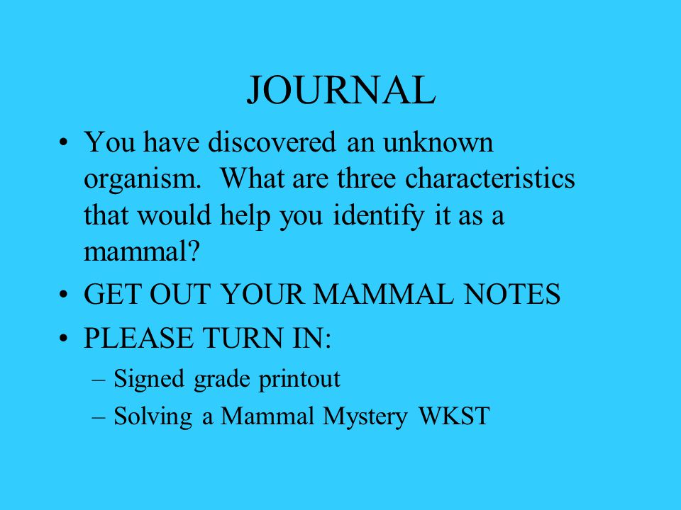 JOURNAL You have discovered an unknown organism. What are three characteristics that would help you identify it as a mammal