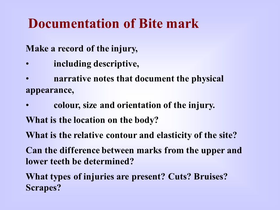 Documentation of Bite mark