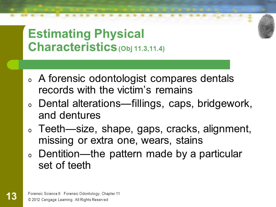 Estimating Physical Characteristics (Obj 11.3,11.4)