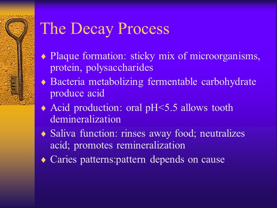 The Decay Process Plaque formation: sticky mix of microorganisms, protein, polysaccharides.