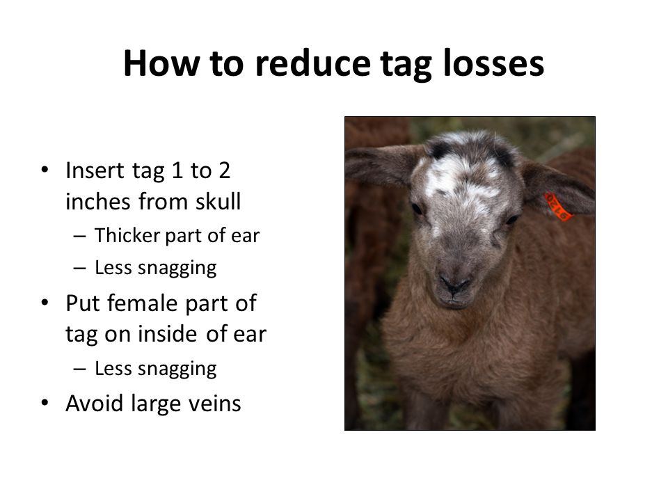 How to reduce tag losses