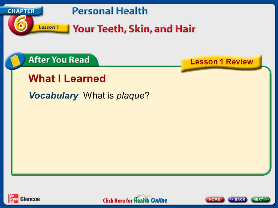 What I Learned Vocabulary What is plaque Lesson 1 Review