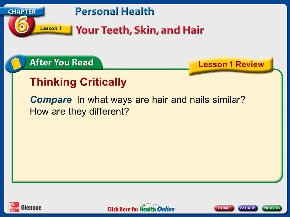 Lesson 1 Review Thinking Critically. Compare In what ways are hair and nails similar How are they different