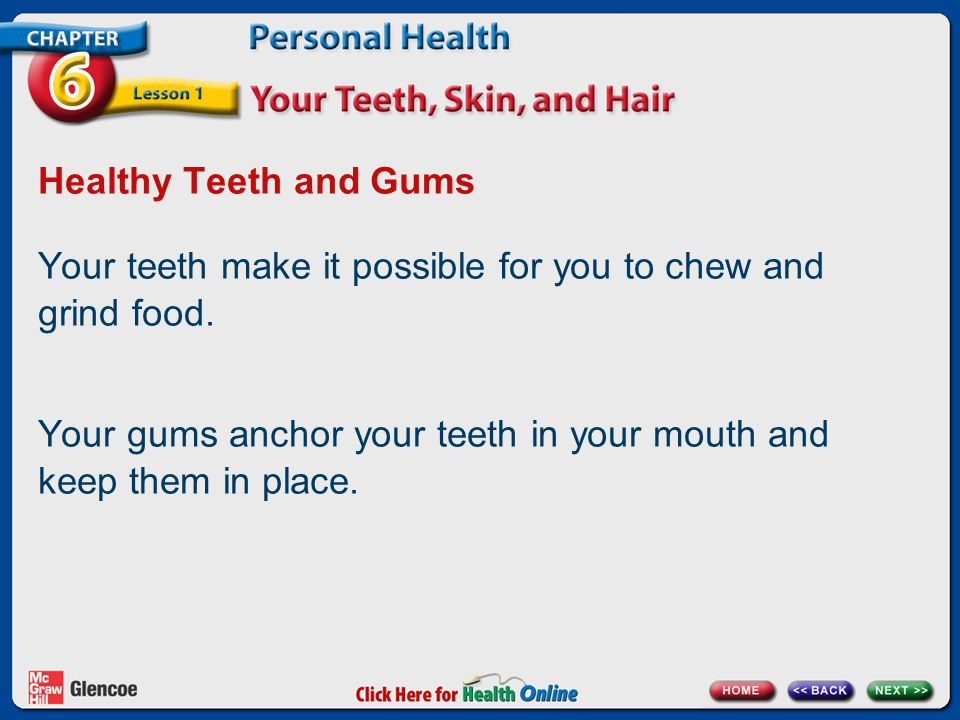 Your teeth make it possible for you to chew and grind food.