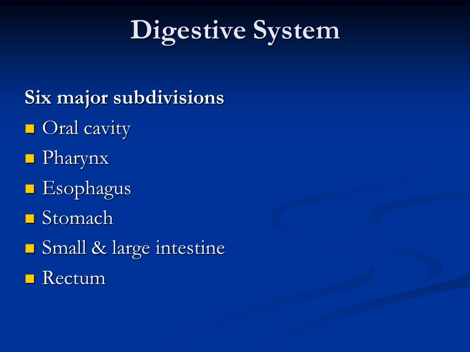Digestive System Six major subdivisions Oral cavity Pharynx Esophagus