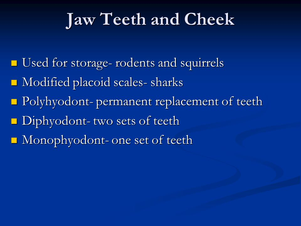 Jaw Teeth and Cheek Used for storage- rodents and squirrels