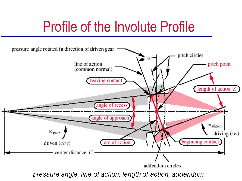 Profile of the Involute Profile