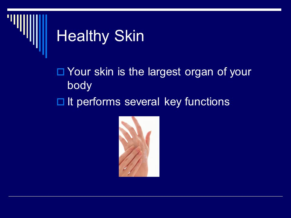 Healthy Skin Your skin is the largest organ of your body