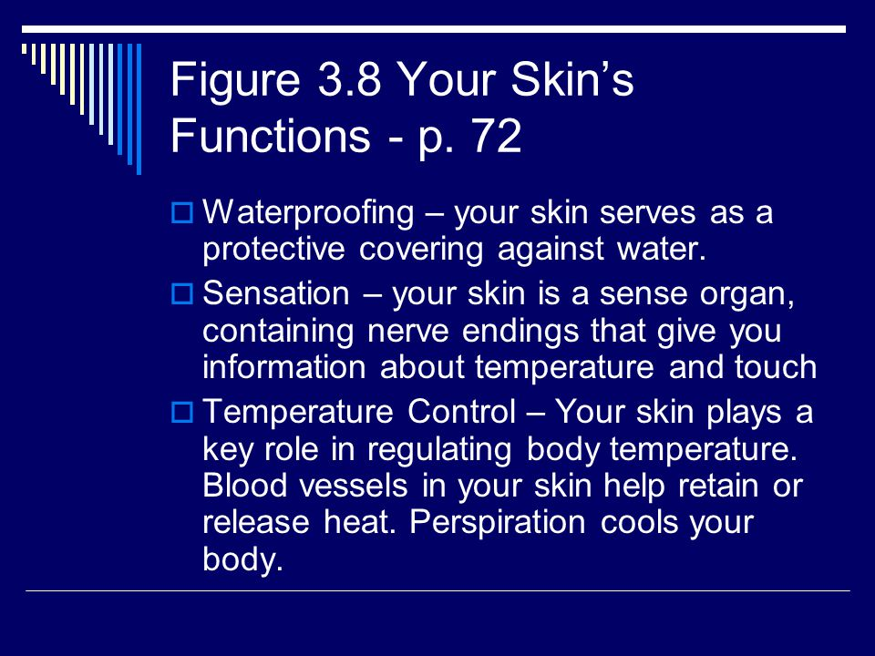 Figure 3.8 Your Skin's Functions - p. 72