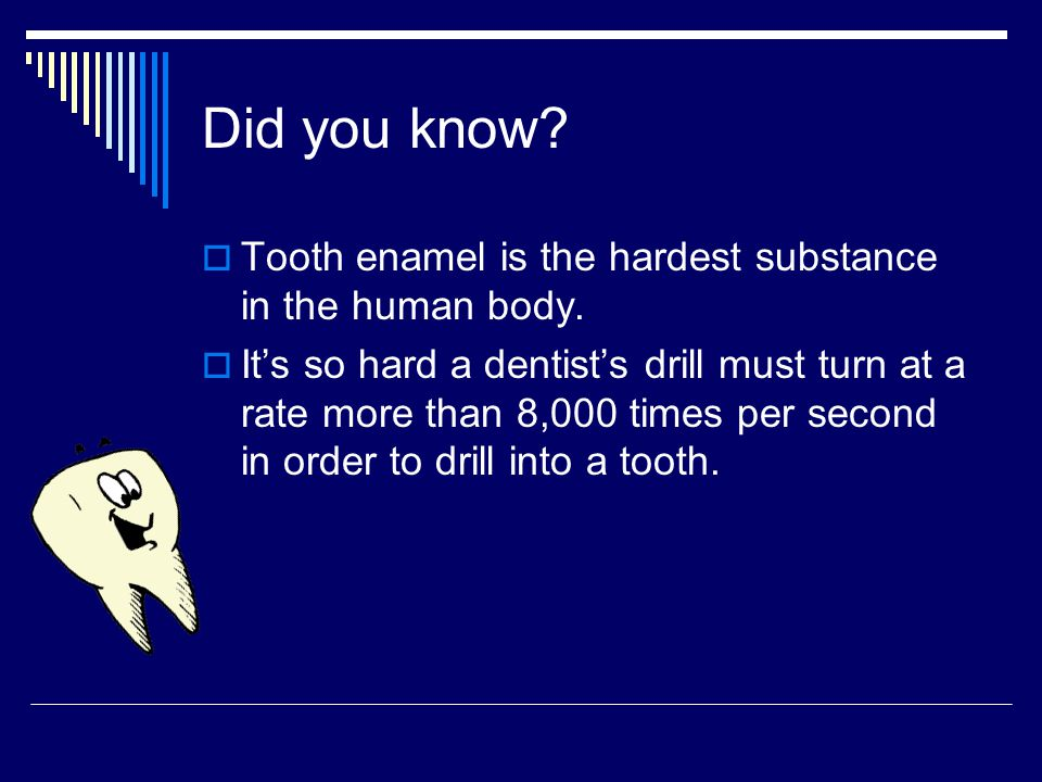 Did you know Tooth enamel is the hardest substance in the human body.