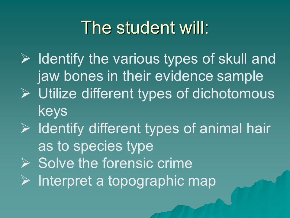 The student will: Identify the various types of skull and jaw bones in their evidence sample. Utilize different types of dichotomous keys.