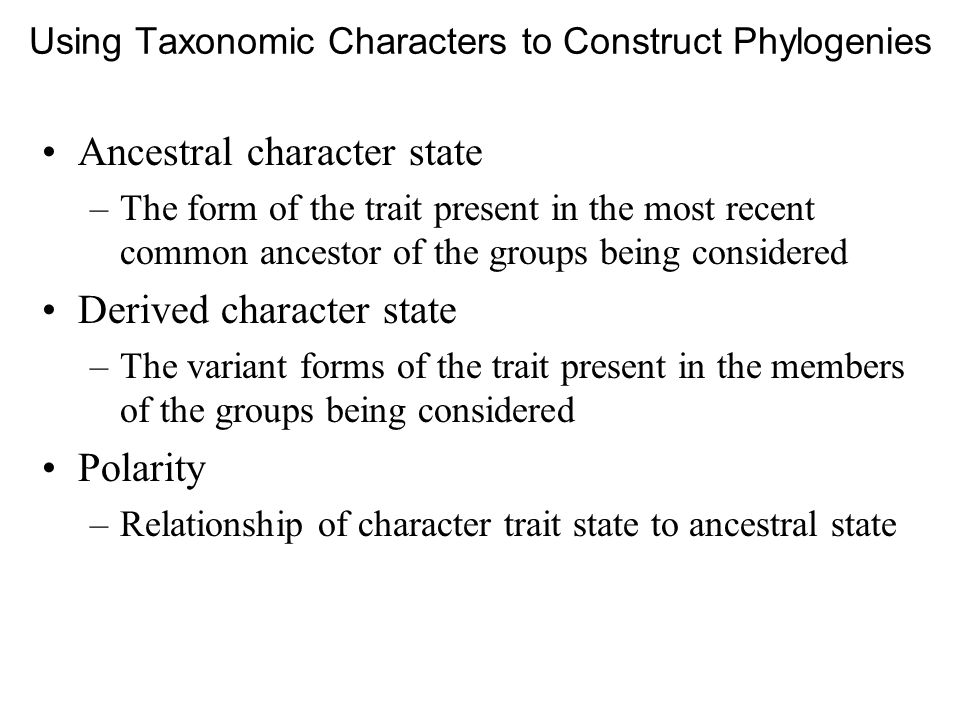 Using Taxonomic Characters to Construct Phylogenies