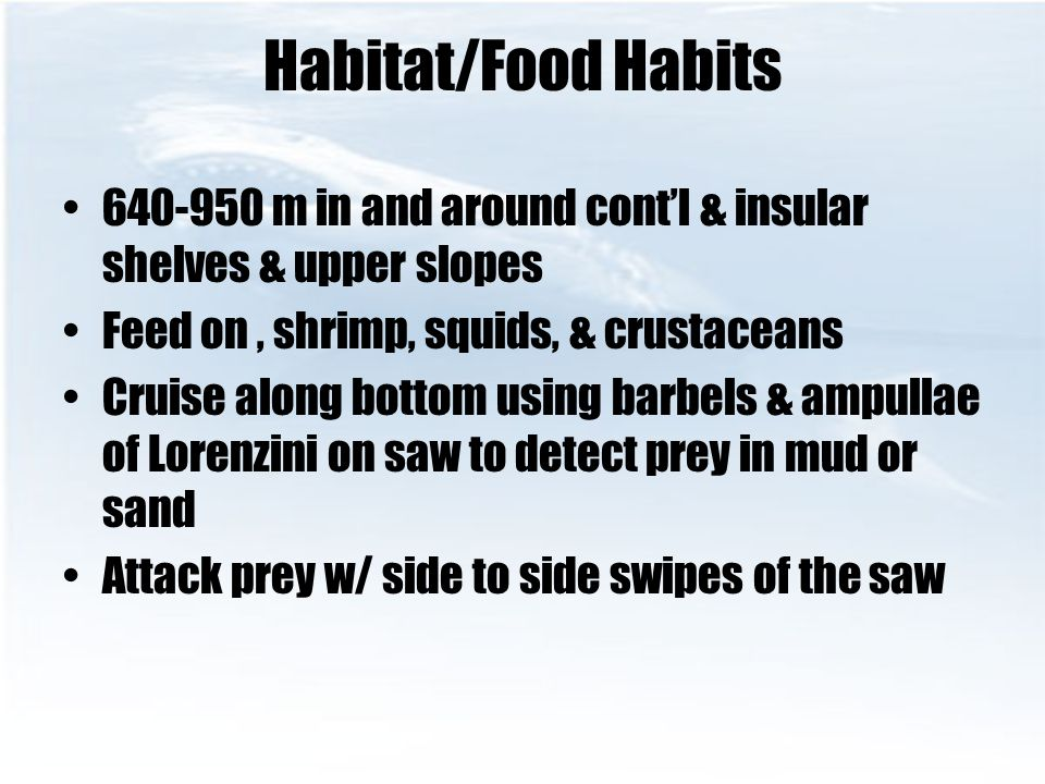Habitat/Food Habits 640-950 m in and around cont'l & insular shelves & upper slopes. Feed on , shrimp, squids, & crustaceans.