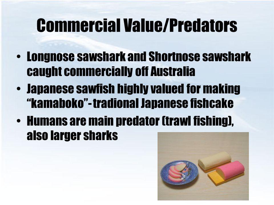 Commercial Value/Predators