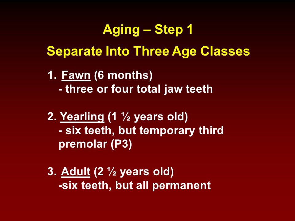 Separate Into Three Age Classes