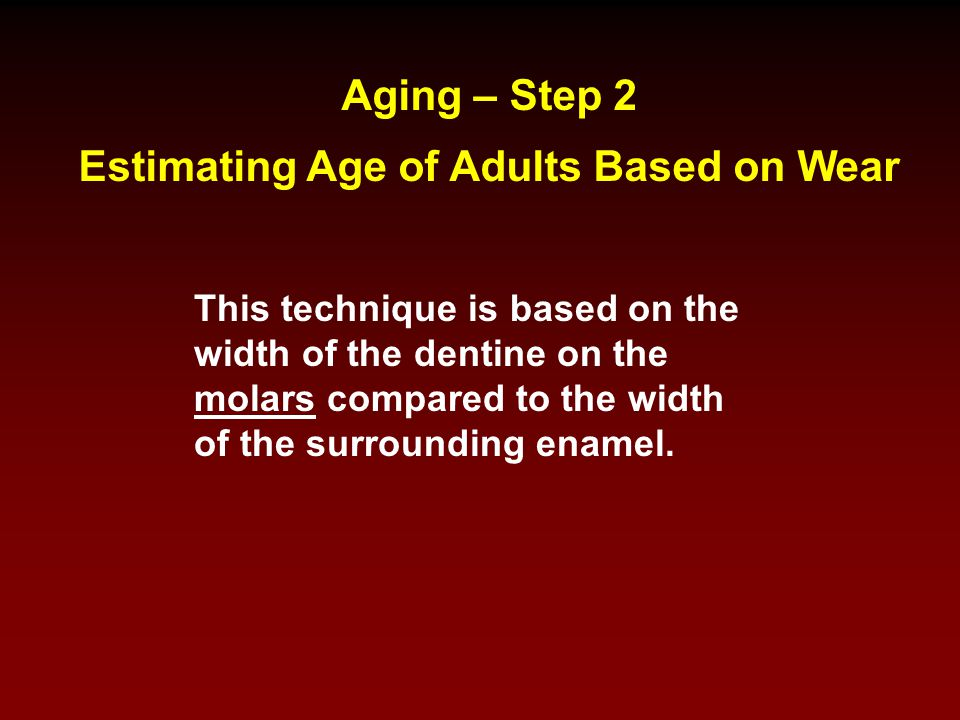 Estimating Age of Adults Based on Wear