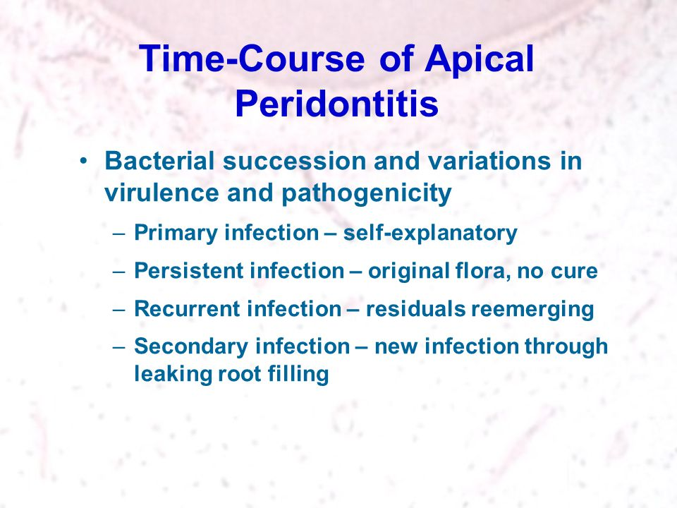 Time-Course of Apical Peridontitis