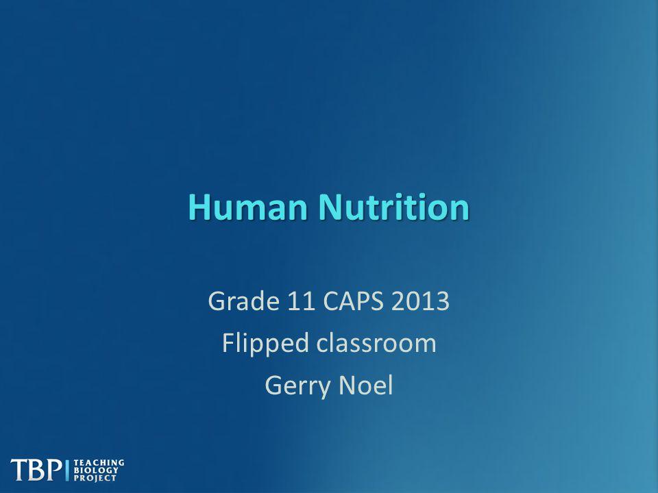 Grade 11 CAPS 2013 Flipped classroom Gerry Noel
